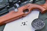 Охотничья пневматика. РСР-винтовка ML15